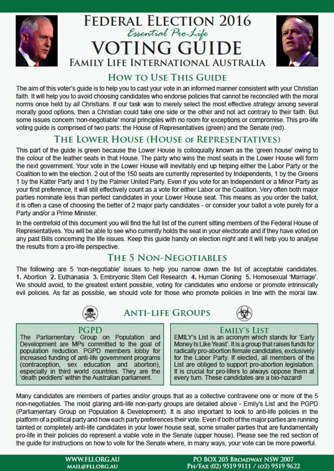 FLI-voting-guide-1